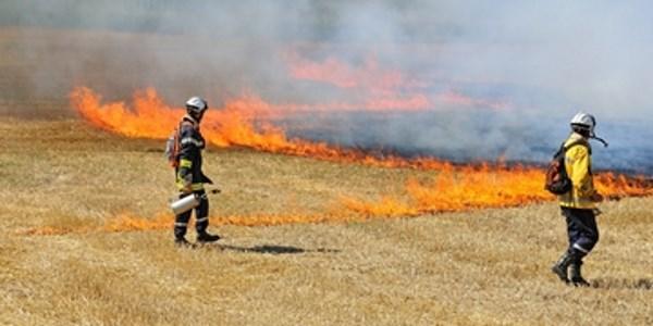 שריפות בקיץ והתמגנות